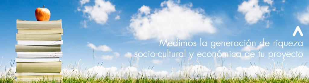 Estudios sectoriales y análisis de impacto socio-económico